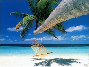 Koh-Samui-palm-tree-hammock