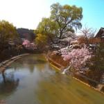 NERI X 2 - NOZZE takayama-passeggiata_cgqpp_T0