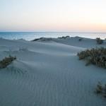 lahami-dune_DSC_0089