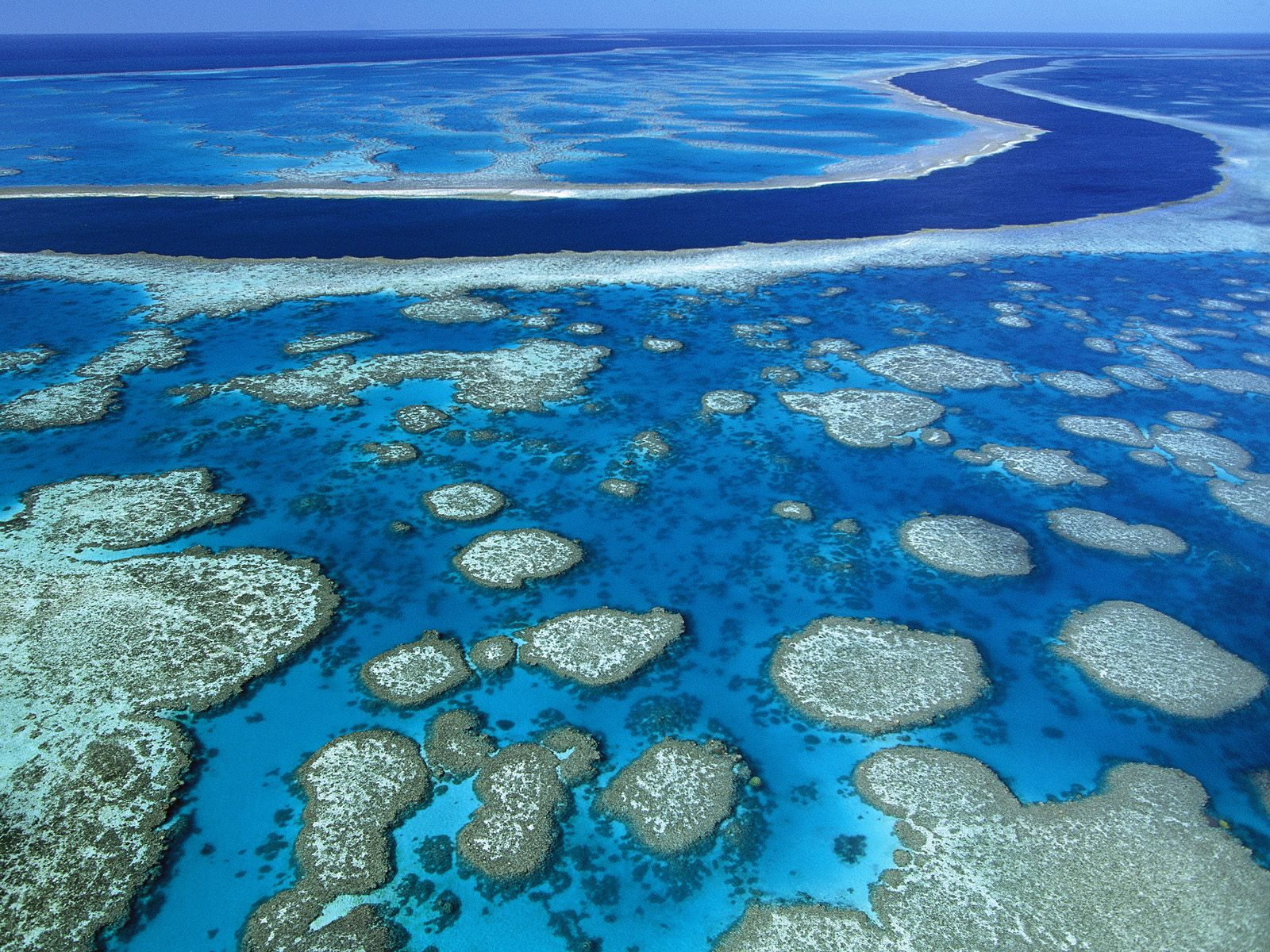 Great Barrier Reef - Marine Park