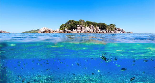 650_350_thumb_962102_Seychelles_2D00_Image_2D00_22