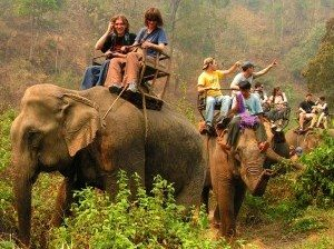 elephant-riding-thailand-tour1-300x249